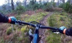 Video: Local Trails in the Sun