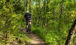 Planning A Post-Lockdown Mountain Biking Trip: The Only Guide You Need