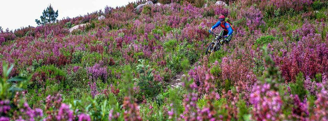 The MTB Adventure in Portugal
