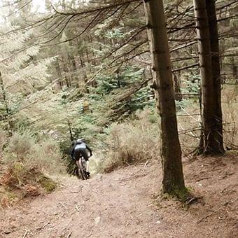 natural mtb trails wicklow ireland