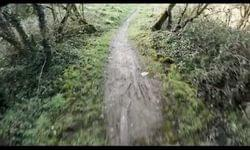 Video: Bike Park Ireland Black 3