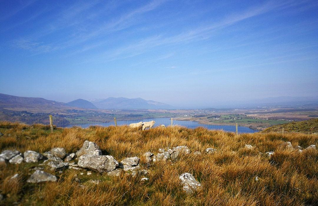 Lough Guitane views