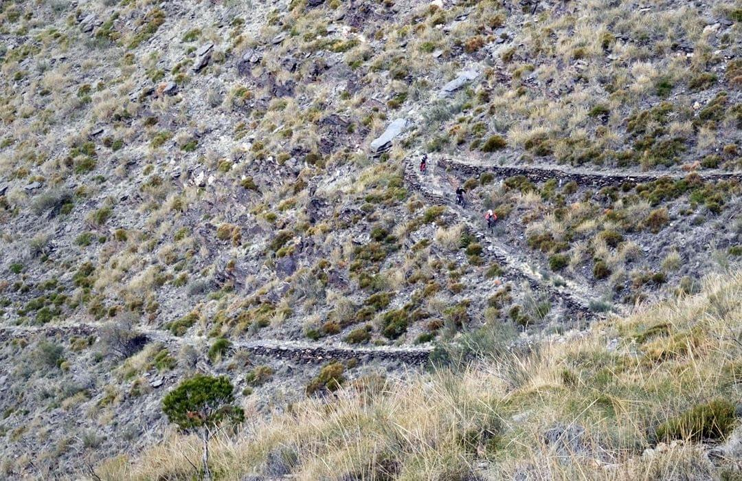 59 switchbacks of Very Freaky